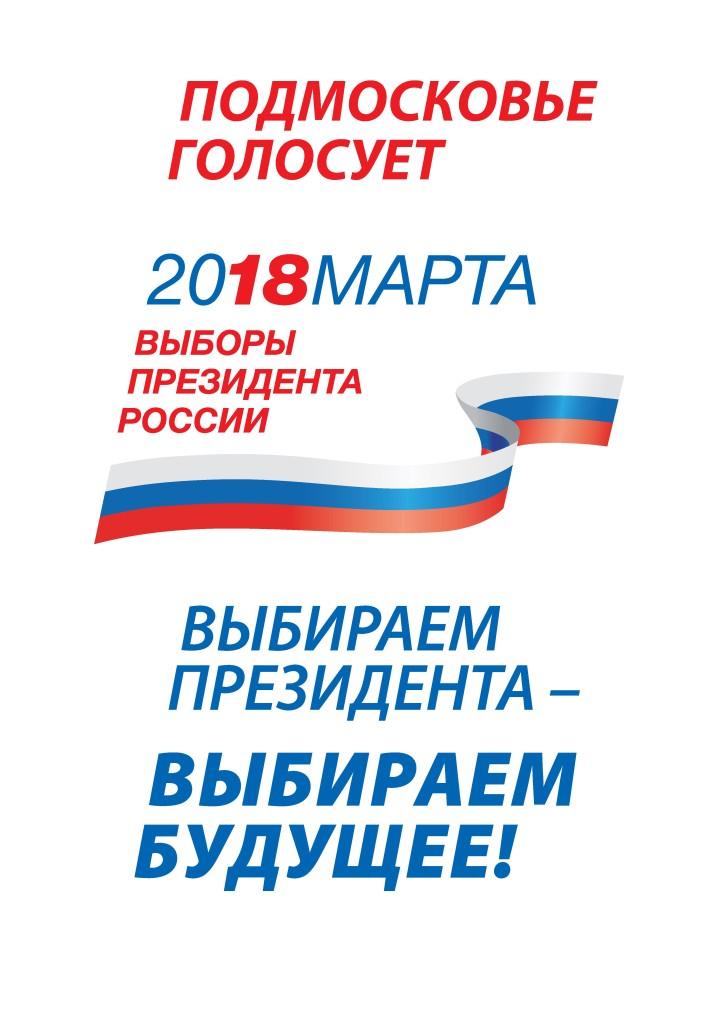 Выборы 180318 Формат А3